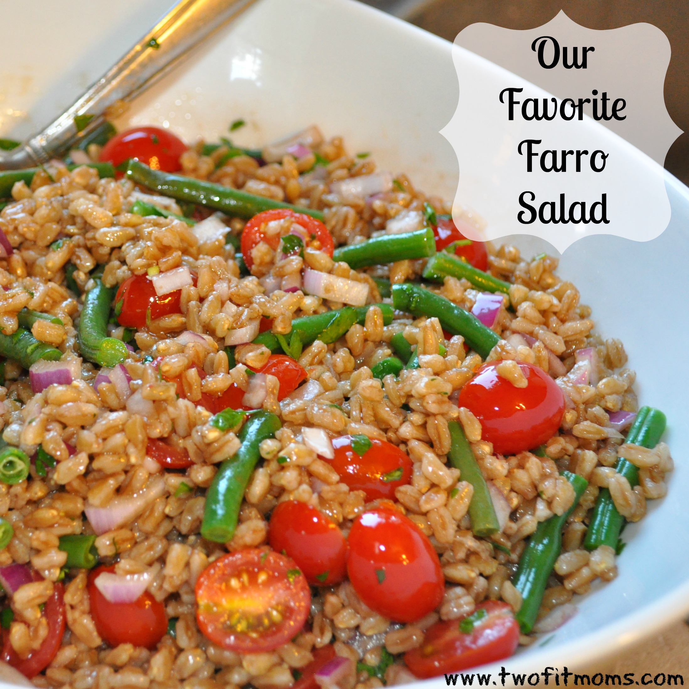 Two Fit Moms » Our Favorite Farro Salad